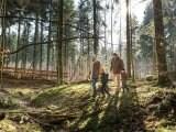 Vacances Les Trois Forêts Metz Center Parcs