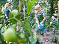 Wannabe ein Gärtner Bispinger Heide Soltau Center Parcs