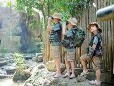 Wannabe ein Park-Ranger Het Heijderbos Heijen Center Parcs