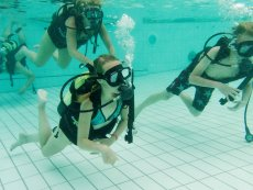 Kids Diving Introduction (1h) Erperheide Peer Center Parcs