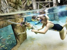 Snorkelen Erperheide Peer Center Parcs