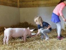 Wannabe ein Tierpfleger Bispinger Heide Soltau Center Parcs
