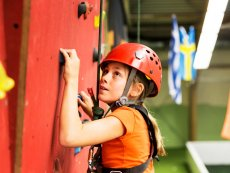 Wall climbing (indoor) Bispinger Heide Soltau Center Parcs