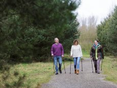 Academy: Nordic Walking Limburgse Peel America Center Parcs