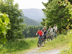 Mountainbike-Tour Park Hochsauerland Winterberg Center Parcs
