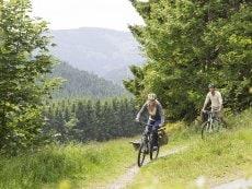 Mountainbike-Tour Les Ardennes Vielsalm Center Parcs