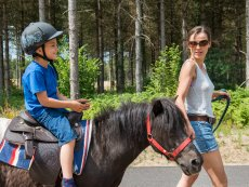 Pony rides Le Lac d'Ailette Laon Center Parcs