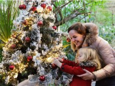 Christmas activities Parc Sandur Emmen Center Parcs
