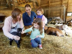 Animal care De Vossemeren Lommel Center Parcs