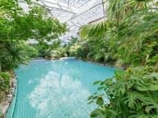 Wave pool Les Hauts de Bruyères Chaumont Center Parcs