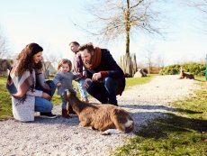 The Children's Farm Parc Sandur Emmen Center Parcs