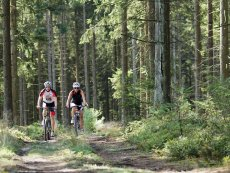 Mountainbiking Les Ardennes Vielsalm Center Parcs