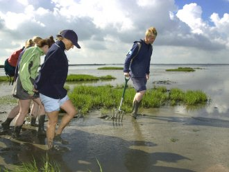 Academy: Walk in the Wadden Sea (UNESCO World Heritage) Park Nordseeküste Butjadingen Center Parcs