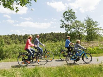 Gazelle Bikes De Vossemeren Lommel Center Parcs