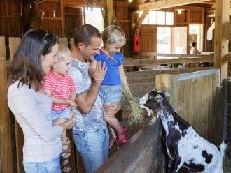 Kinderbauernhof Les Trois Forêts Metz Center Parcs