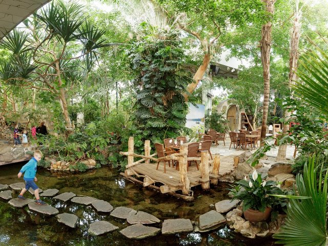 Jungle Thema Slaapkamer : Foto video belgië lommel limburg center parcs