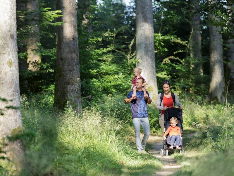 Spa deep nature les trois forêts