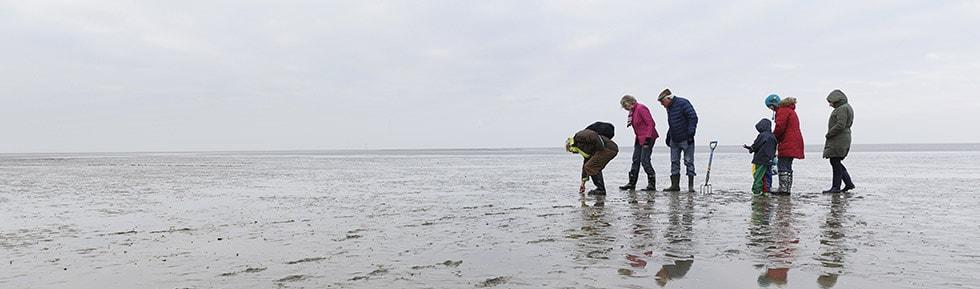 Park Nordseeküste
